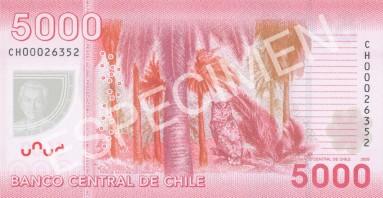 5000- reverso